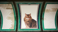 Campagne affiches CATS métro londres